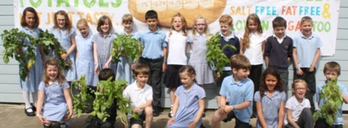 School Children with their Potato Plants