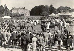 Historic Image of the Suffolk Show